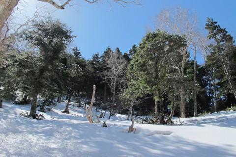 横尾から蝶ヶ岳への登り